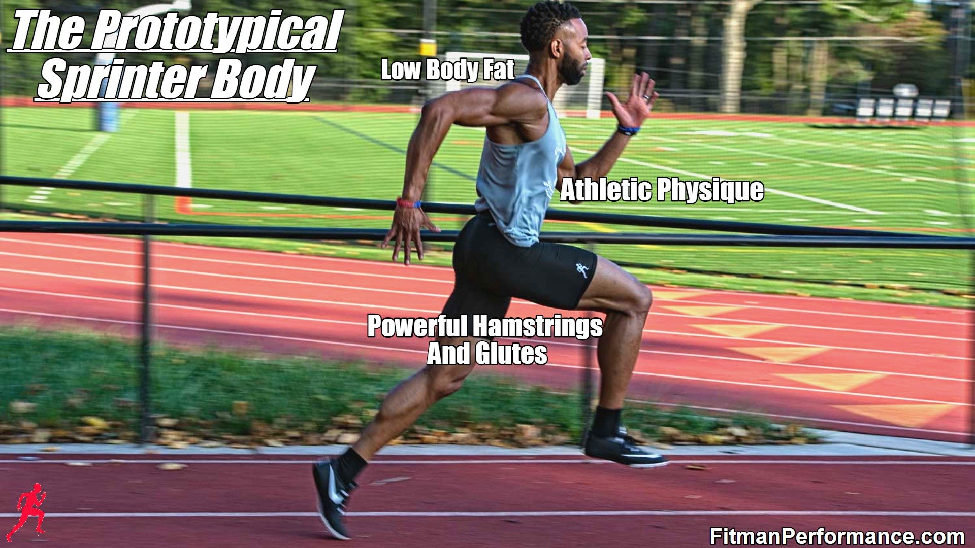Sprinter Body Type: What Defines It?